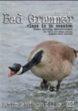 Bad Grammer DVD